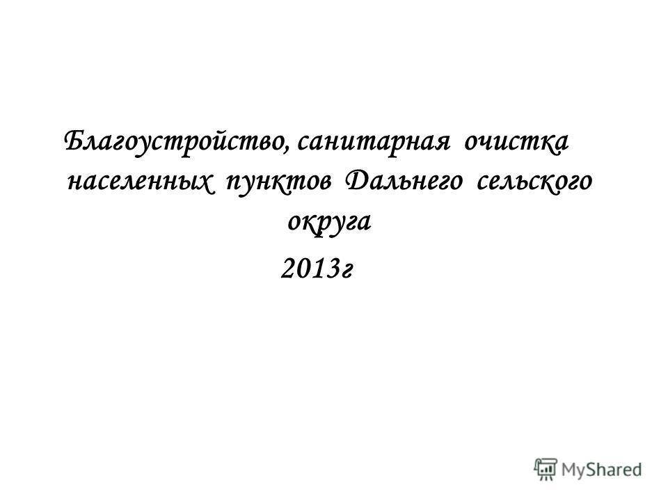 Благоустройство, санитарная очистка населенных пунктов Дальнего сельского округа 2013г