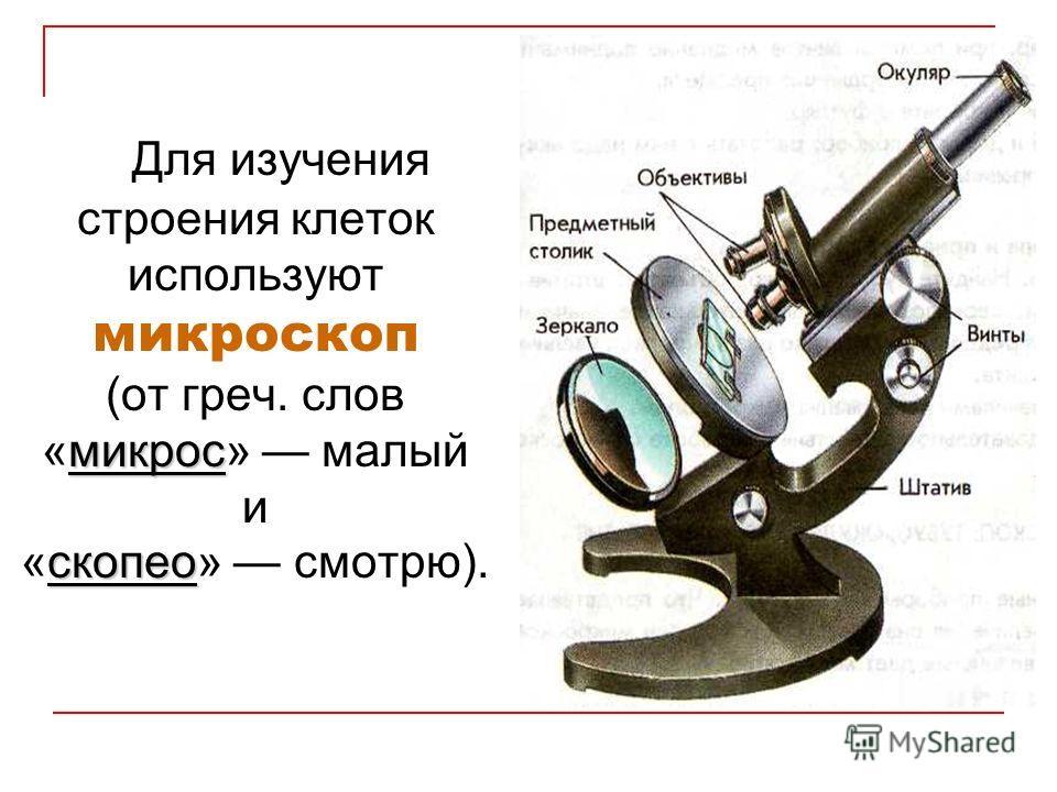 микрос скопео Для изучения строения клеток используют микроскоп (от греч. слов «микрос» малый и «скопео» смотрю).