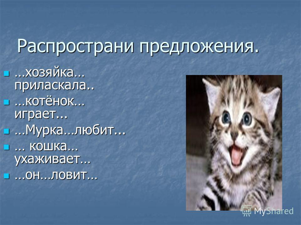 Распространи предложения. Распространи предложения. …хозяйка… приласкала.. …хозяйка… приласкала.. …котёнок… играет... …котёнок… играет... …Мурка…любит... …Мурка…любит... … кошка… ухаживает… … кошка… ухаживает… …он…ловит… …он…ловит…
