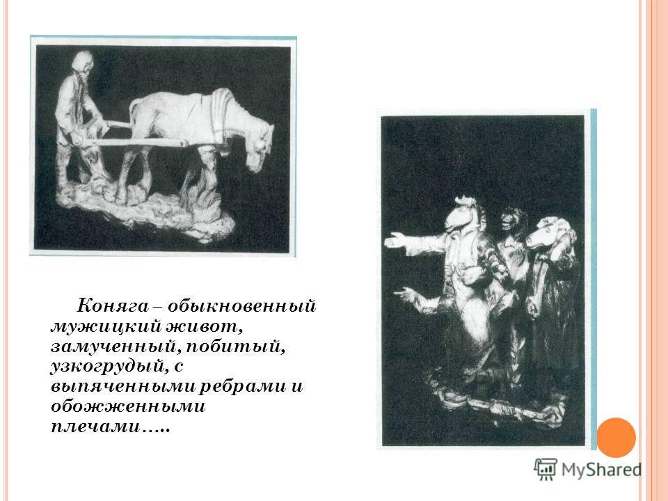 Коняга – обыкновенный мужицкий живот, замученный, побитый, узкогрудый, с выпяченными ребрами и обожженными плечами…..