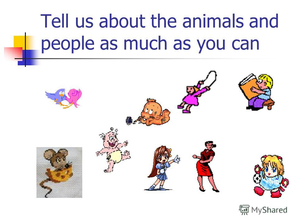 Tell us about the animals and people as much as you can