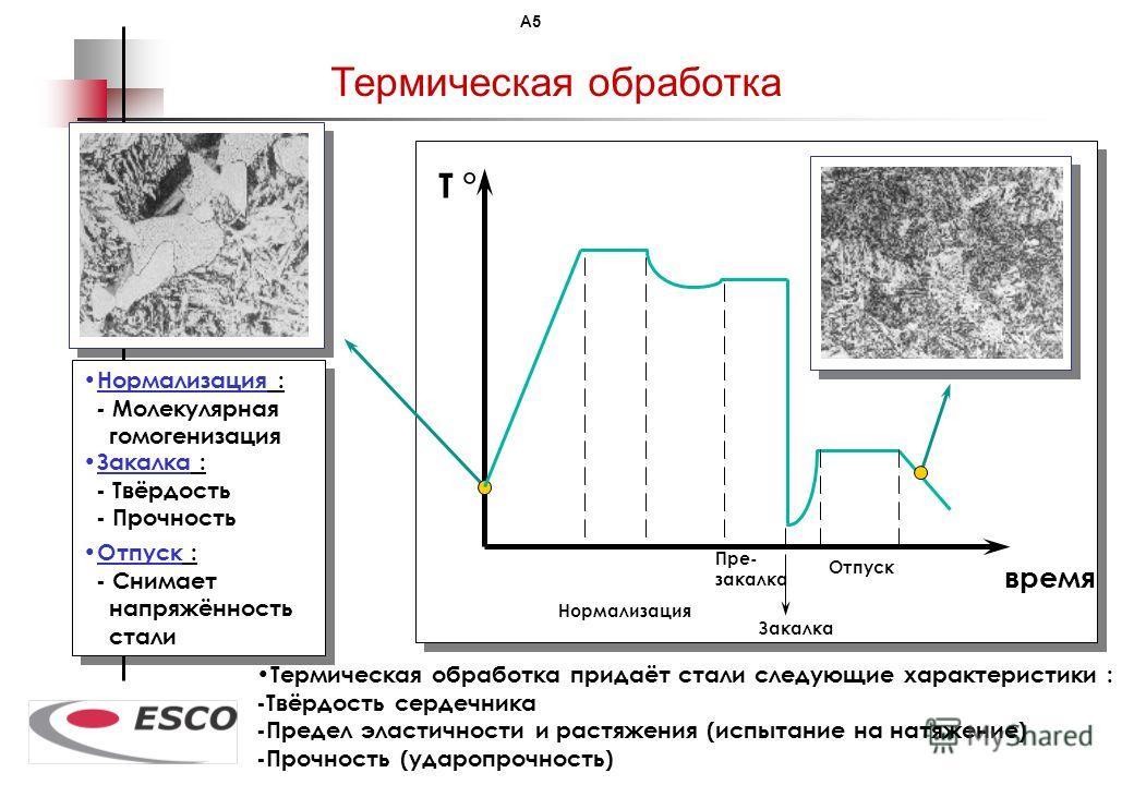 100 % деталей ESCO подогнаны вручную Все шаблоны произведены ESCO Corp. из одного образца. Они используются литейными заводами ESCO и держателей лицензий чтобы обеспечить... МИРОВУЮ ВЗАИМОЗАМЕНЯЕМОСТЬ ISO 9000 Подгонка