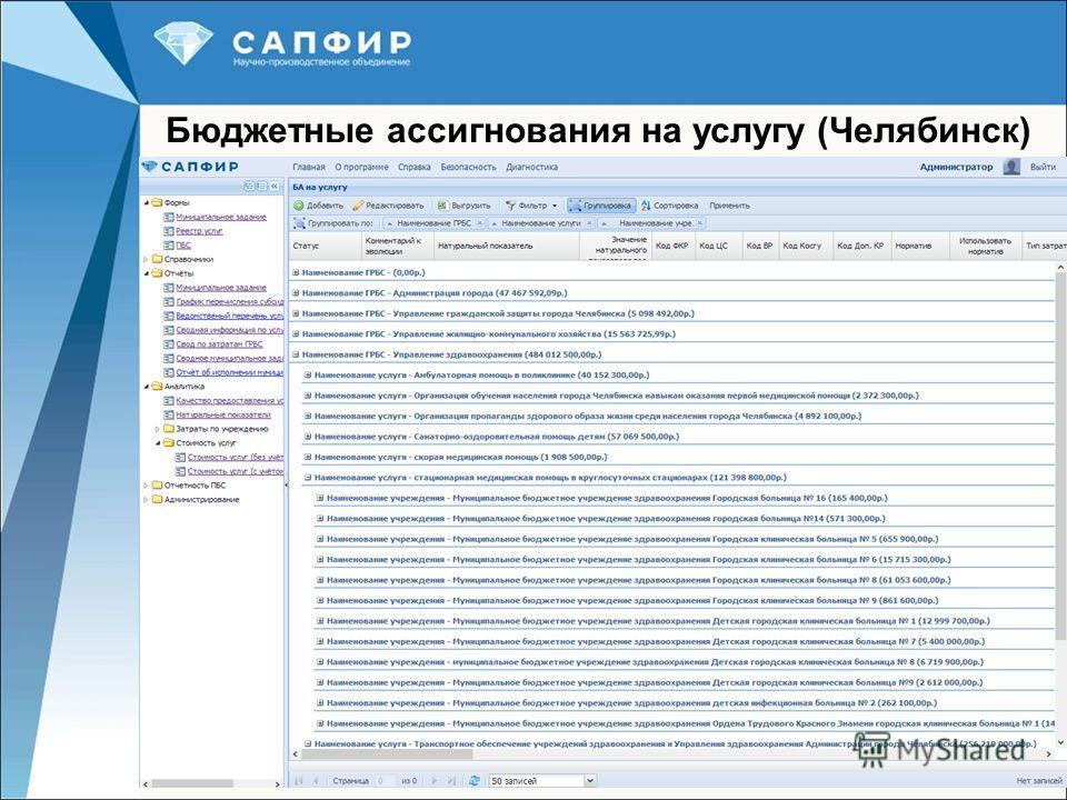 23 Бюджетные ассигнования на услугу (Челябинск)