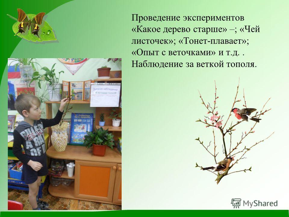 Проведение экспериментов «Какое дерево старше» –; «Чей листочек»; «Тонет-плавает»; «Опыт с веточками» и т.д.. Наблюдение за веткой тополя.