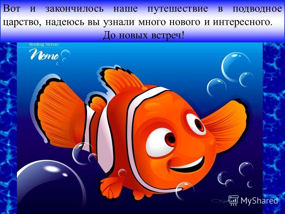 Вот и закончилось наше путешествие в подводное царство, надеюсь вы узнали много нового и интересного. До новых встреч!