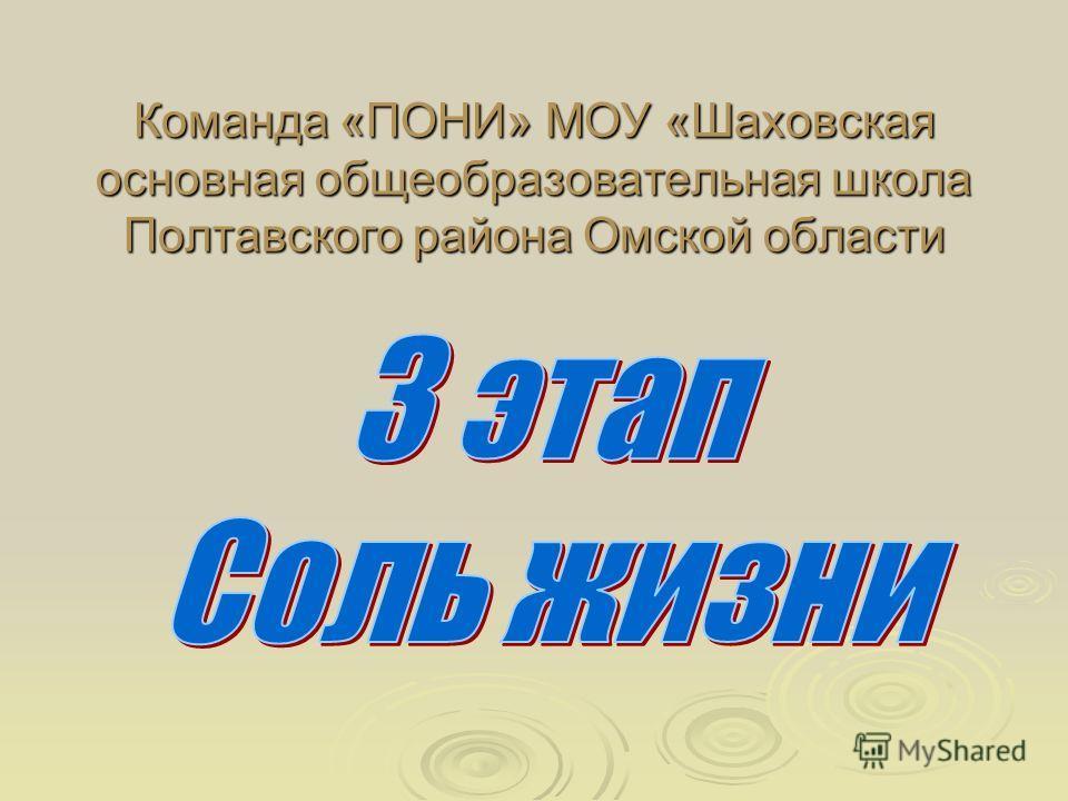 Команда «ПОНИ» МОУ «Шаховская основная общеобразовательная школа Полтавского района Омской области