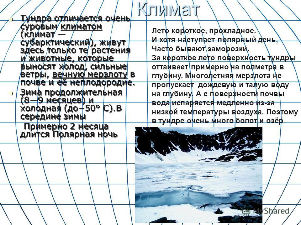 Климат Климат Тундра отличается очень суровым климатом (климат субарктический), живут здесь только те растения и животные, которые выносят холод, сильные ветры, вечную мерзлоту в почве и её неплодородие. Тундра отличается очень суровым климатом (клим