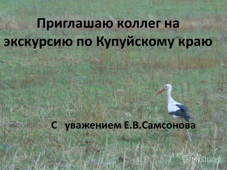 Приглашаю коллег на экскурсию по Купуйскому краю С уважением Е.В.Самсонова