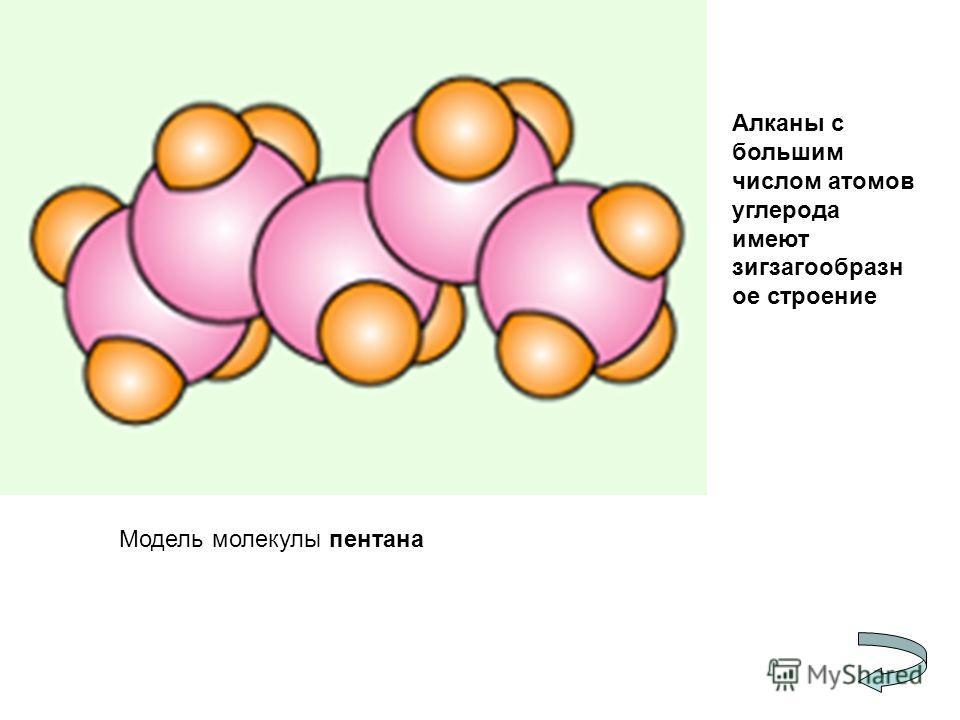 Модель молекулы пентана Алканы с большим числом атомов углерода имеют зигзагообразн ое строение