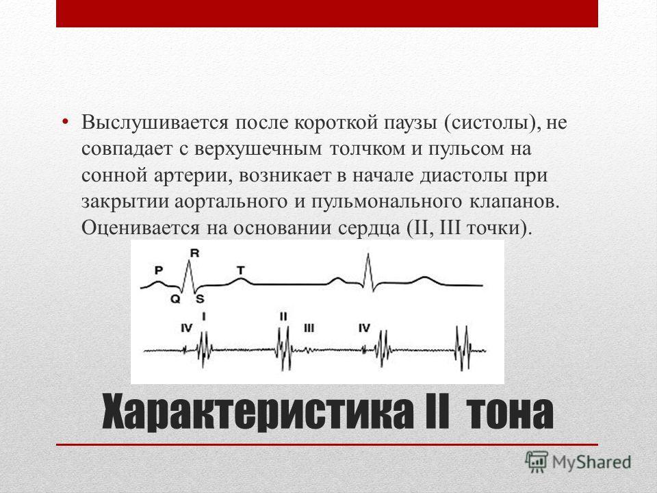 Характеристика ІІ тона Выслушивается после короткой паузы (систолы), не совпадает с верхушечным толчком и пульсом на сонной артерии, возникает в начале диастолы при закрытии аортального и пульмонального клапанов. Оценивается на основании сердца (II,