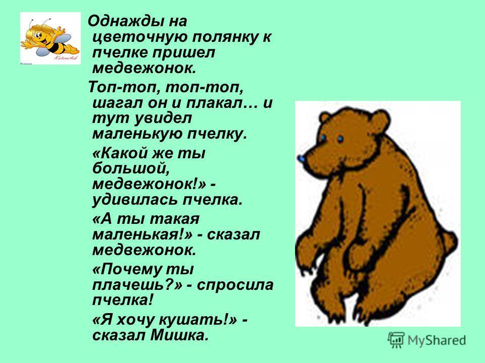 Однажды на цветочную полянку к пчелке пришел медвежонок. Топ-топ, топ-топ, шагал он и плакал… и тут увидел маленькую пчелку. «Какой же ты большой, медвежонок!» - удивилась пчелка. «А ты такая маленькая!» - сказал медвежонок. «Почему ты плачешь?» - сп