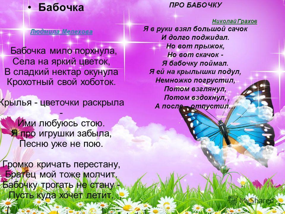 Бабочка Людмила Мелехова Бабочка мило порхнула, Села на яркий цветок, В сладкий нектар окунула Крохотный свой хоботок. Крылья - цветочки раскрыла - Ими любуюсь стою. Я про игрушки забыла, Песню уже не пою. Громко кричать перестану, Братец мой тоже мо