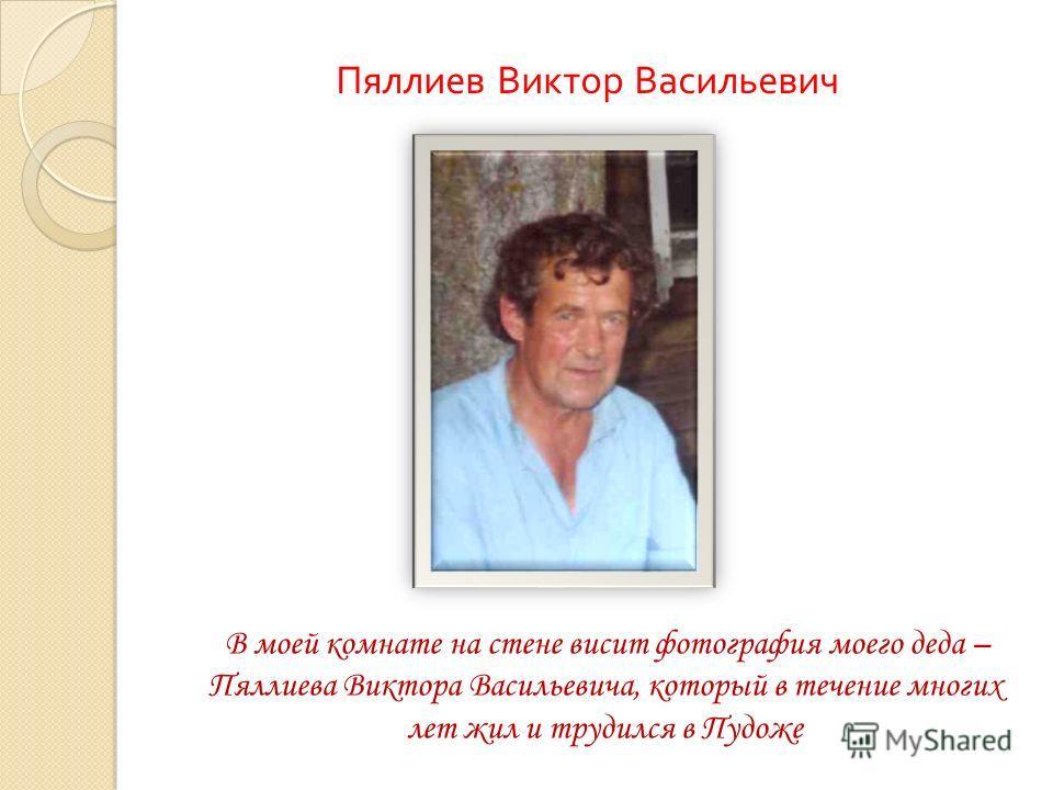 В моей комнате на стене висит фотография моего деда – Пяллиева Виктора Васильевича, который в течение многих лет жил и трудился в Пудоже Пяллиев Виктор Васильевич