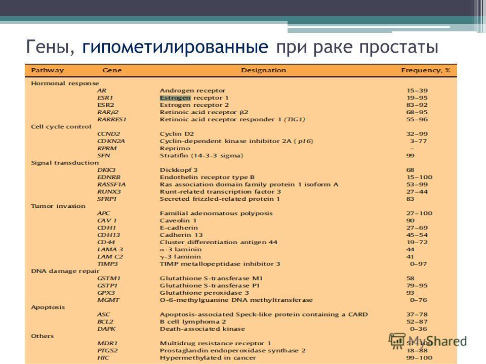 Гены, гипометилированные при раке простаты