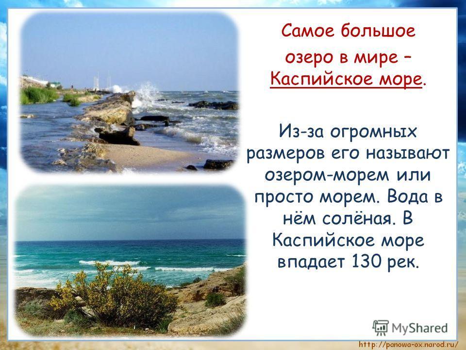 Самое большое озеро в мире – Каспийское море. Из-за огромных размеров его называют озером-морем или просто морем. Вода в нём солёная. В Каспийское море впадает 130 рек.