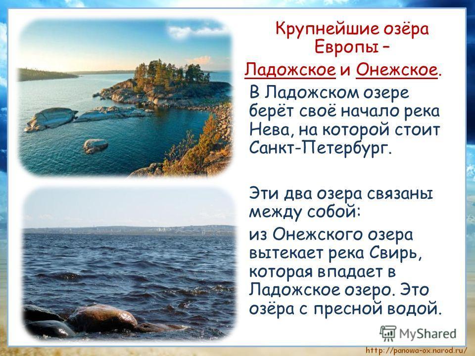 Крупнейшие озёра Европы – Ладожское и Онежское. В Ладожском озере берёт своё начало река Нева, на которой стоит Санкт-Петербург. Эти два озера связаны между собой: из Онежского озера вытекает река Свирь, которая впадает в Ладожское озеро. Это озёра с