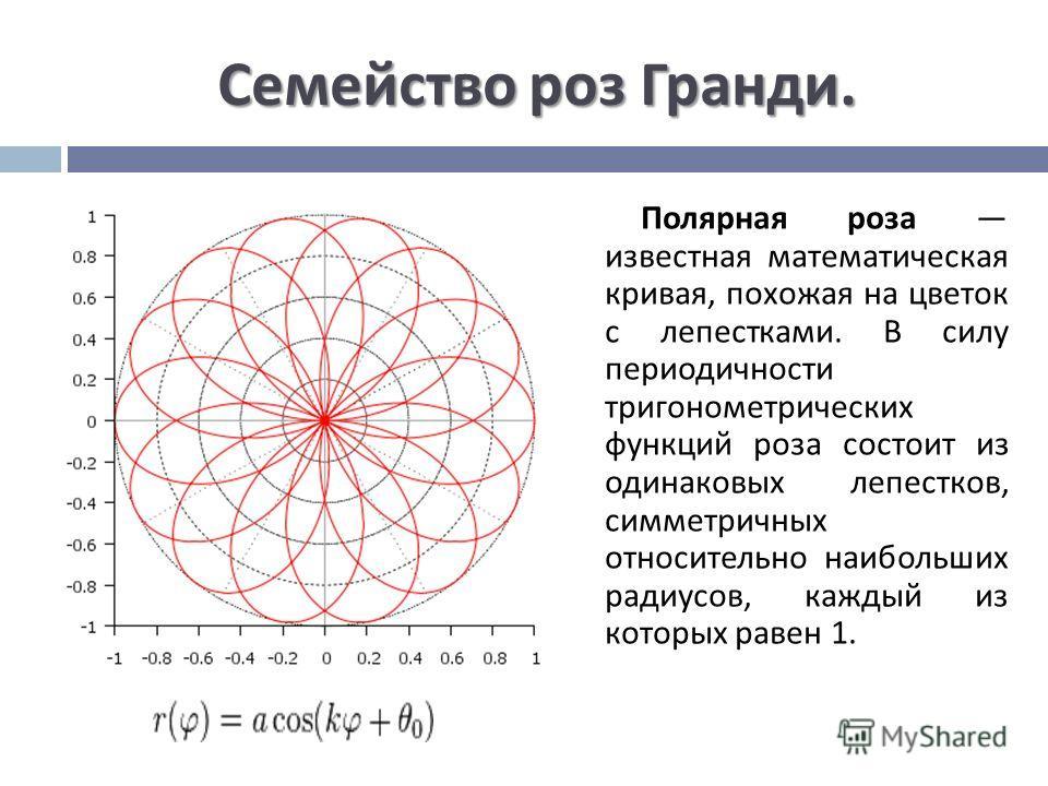 Семейство роз Гранди. Полярная роза известная математическая кривая, похожая на цветок с лепестками. В силу периодичности тригонометрических функций роза состоит из одинаковых лепестков, симметричных относительно наибольших радиусов, каждый из которы