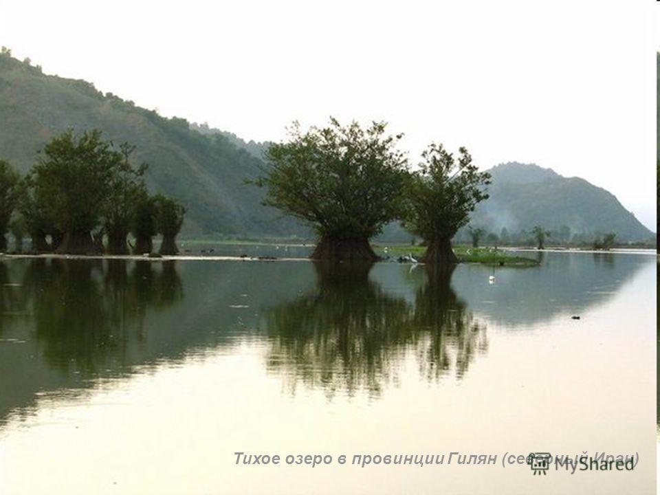 Тихое озеро в провинции Гилян (северный Иран)