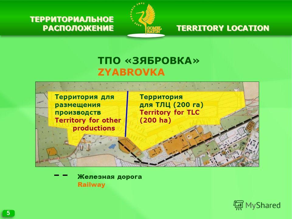 5 TERRITORY LOCATION Железная дорога Railway ТПО «ЗЯБРОВКА» ZYABROVKA Территория для размещения производств Territory for other productions Территория для ТЛЦ (200 га) Territory for TLC (200 ha) ТЕРРИТОРИАЛЬНОЕРАСПОЛОЖЕНИЕ