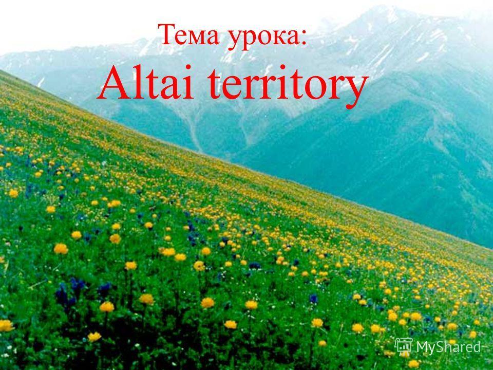 Тема урока: Altai territory