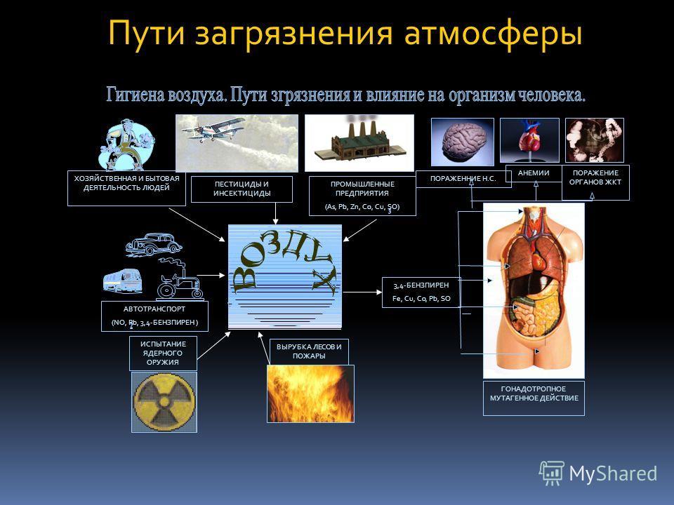 Пути загрязнения атмосферы ХОЗЯЙСТВЕННАЯ И БЫТОВАЯ ДЕЯТЕЛЬНОСТЬ ЛЮДЕЙ ПОРАЖЕНИЕ ОРГАНОВ ЖКТ ПЕСТИЦИДЫ И ИНСЕКТИЦИДЫ ПРОМЫШЛЕННЫЕ ПРЕДПРИЯТИЯ (As, Pb, Zn, Co, Cu, SO) ПОРАЖЕННИЕ Н.С. АНЕМИИ ГОНАДОТРОПНОЕ МУТАГЕННОЕ ДЕЙСТВИЕ 3,4-БЕНЗПИРЕН Fe, Cu, Co, P