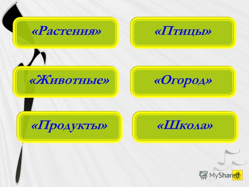 «Растения» «Продукты» «Животные» «Школа»«Огород»«Птицы»