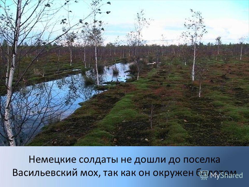 Немецкие солдаты не дошли до поселка Васильевский мох, так как он окружен болотом