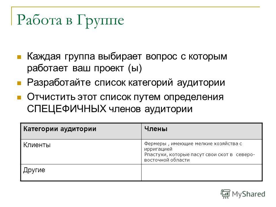 Работа в Группе Каждая группа выбирает вопрос с которым работает ваш проект (ы) Разработайте список категорий аудитории Отчистить этот список путем определения СПЕЦЕФИЧНЫХ членов аудитории Категории аудиторииЧлены Клиенты Фермеры, имеющие мелкие хозя