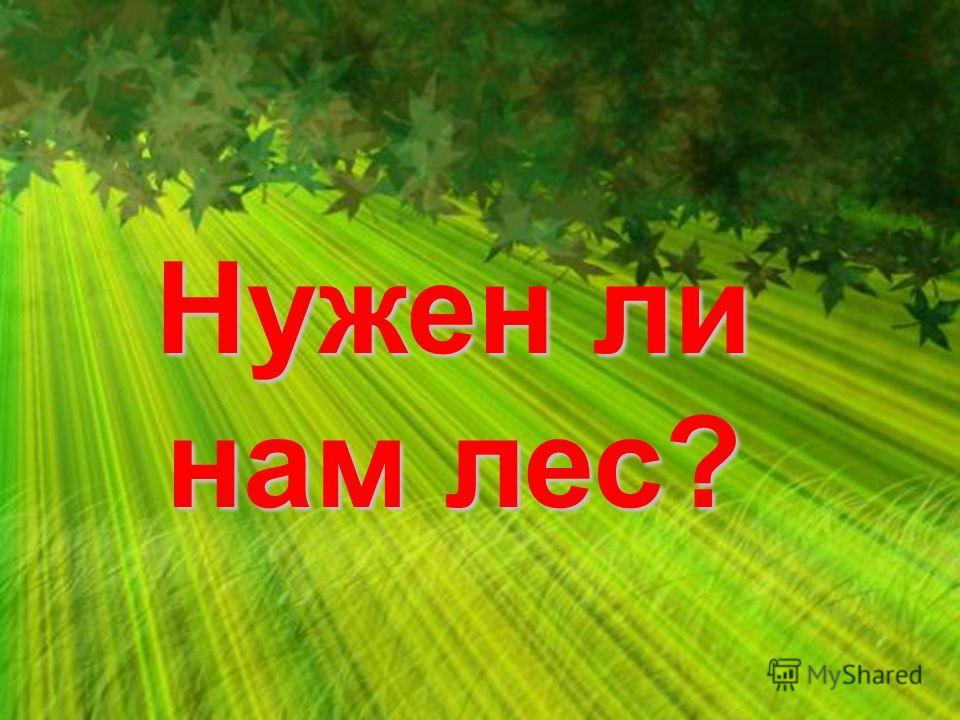 Нужен ли нам лес?
