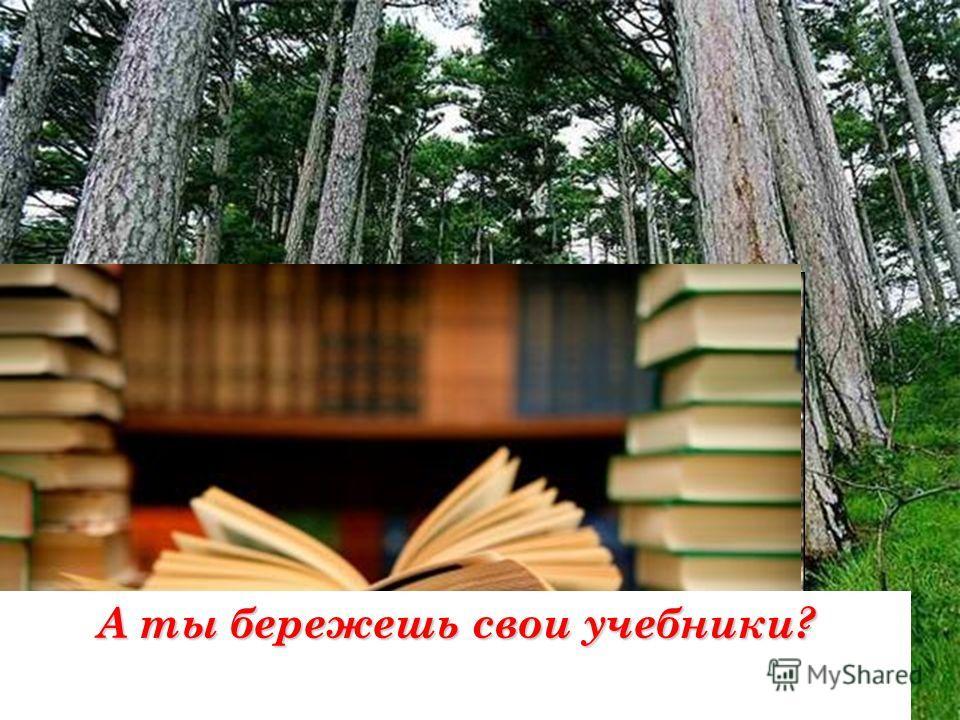 Из древесины делают бумагу, но для этого надо рубить красивые деревья. А ты бережешь свои учебники?