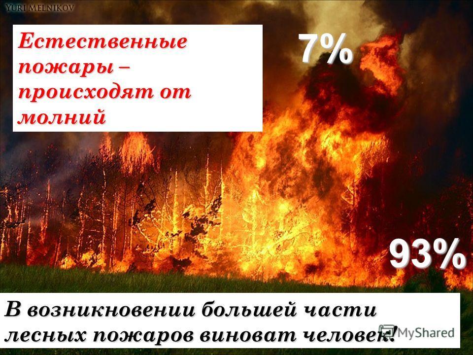 Естественные пожары – происходят от молний В возникновении большей части лесных пожаров виноват человек! 7% 93%