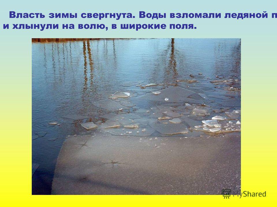 Власть зимы свергнута. Воды взломали ледяной поток и хлынули на волю, в широкие поля.