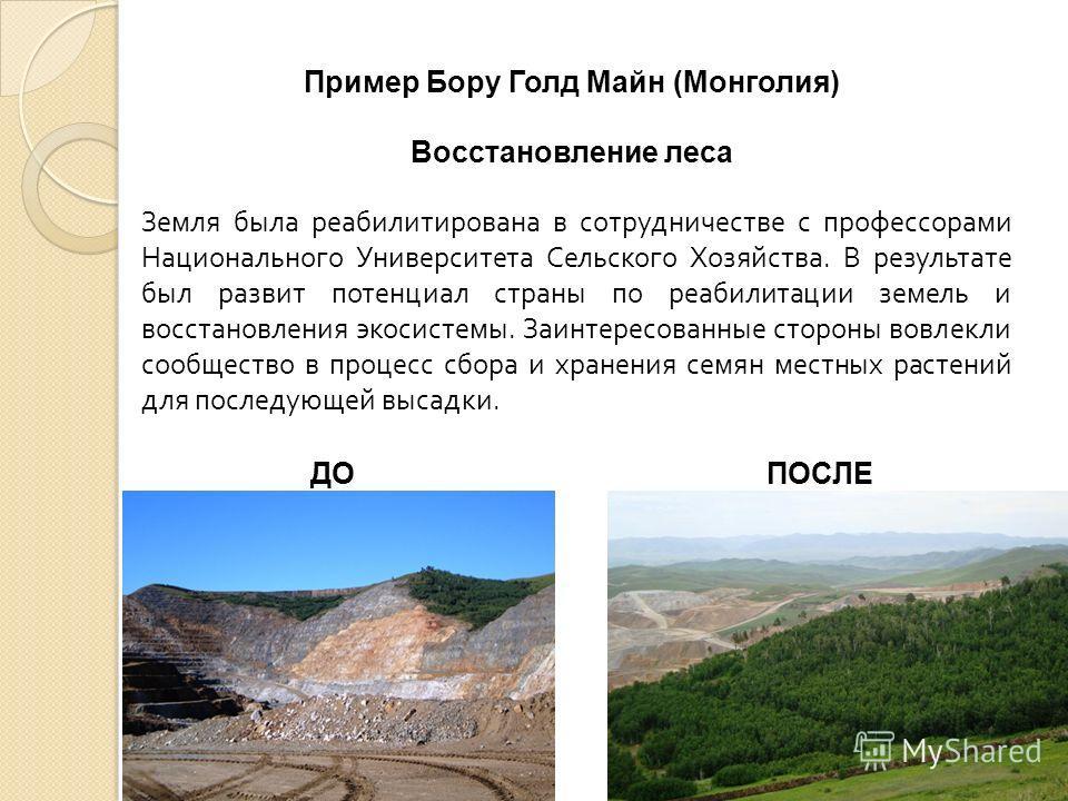 Пример Бору Голд Майн (Монголия) Восстановление леса Земля была реабилитирована в сотрудничестве с профессорами Национального Университета Сельского Хозяйства. В результате был развит потенциал страны по реабилитации земель и восстановления экосистем