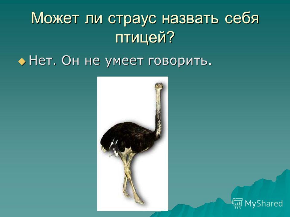 Может ли страус назвать себя птицей? Нет. Он не умеет говорить. Нет. Он не умеет говорить.