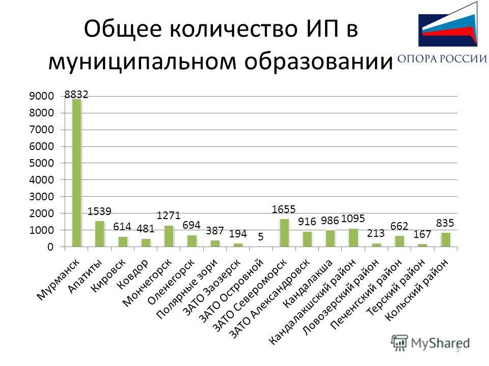 Общее количество ИП в муниципальном образовании 5