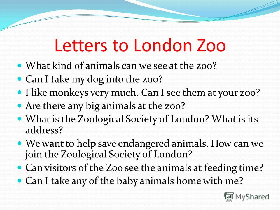 Letters to London Zoo What kind of animals can we see at the zoo? Can I take my dog into the zoo? I like monkeys very much. Can I see them at your zoo? Are there any big animals at the zoo? What is the Zoological Society of London? What is its addres