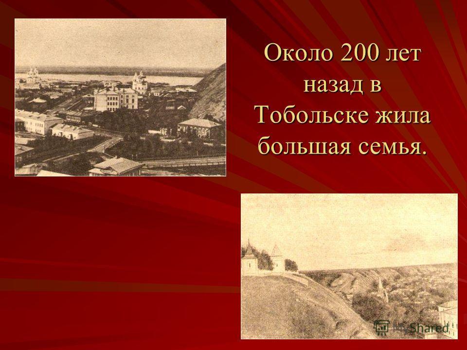 Около 200 лет назад в Тобольске жила большая семья.