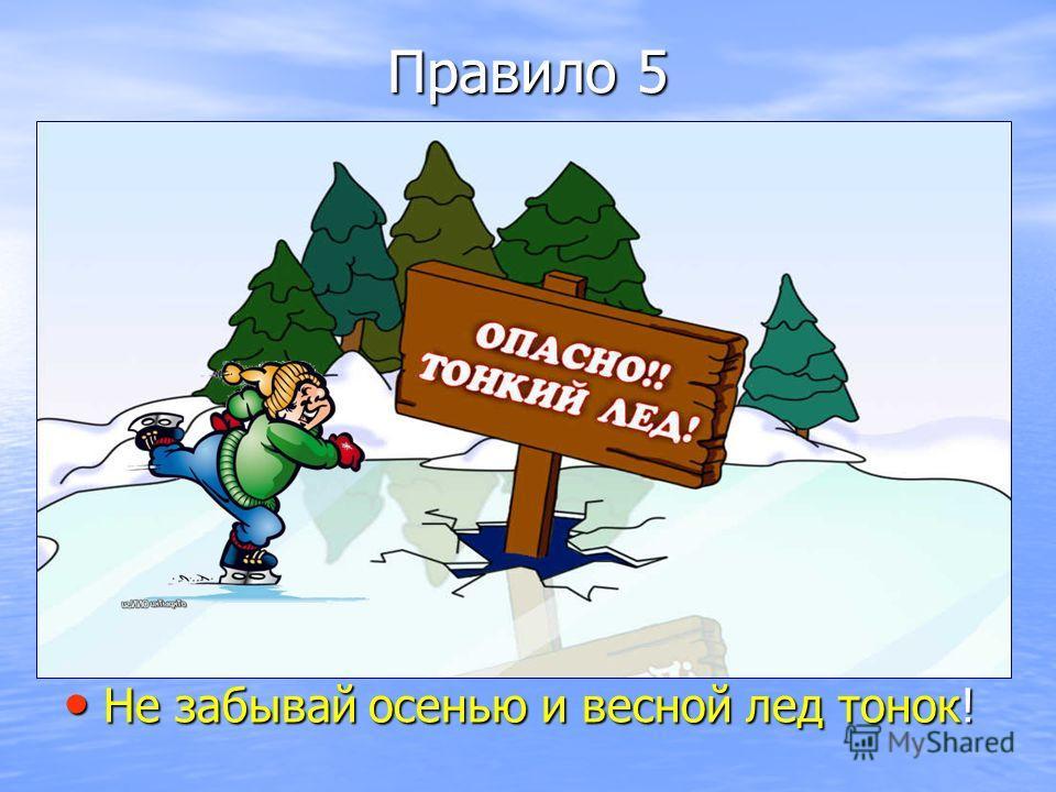 Правило 5 Не забывай осенью и весной лед тонок! Не забывай осенью и весной лед тонок!