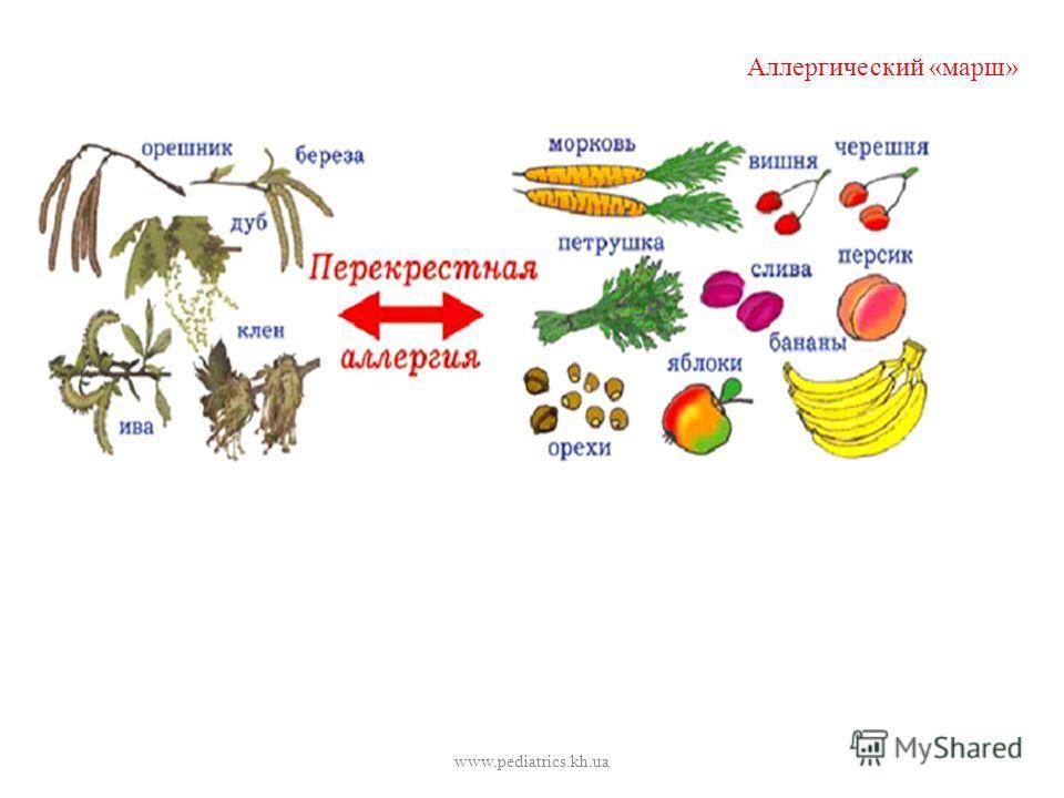 Аллергический «марш» www.pediatrics.kh.ua