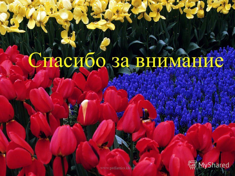 Спасибо за внимание www.pediatrics.kh.ua
