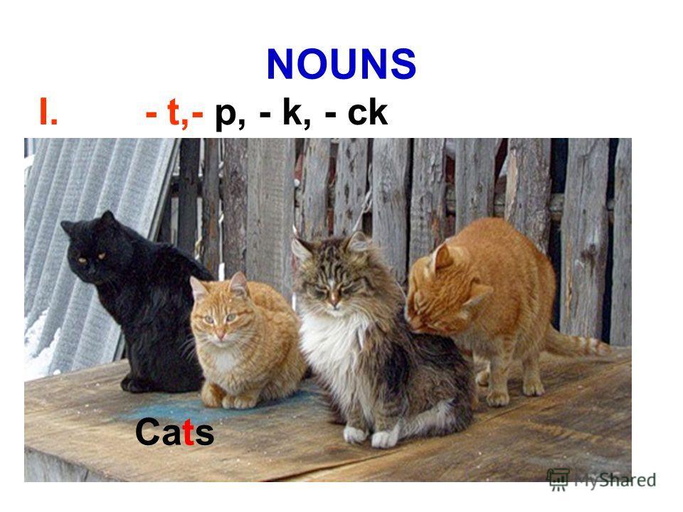 NOUNS I. - t,- p, - k, - ck Cats