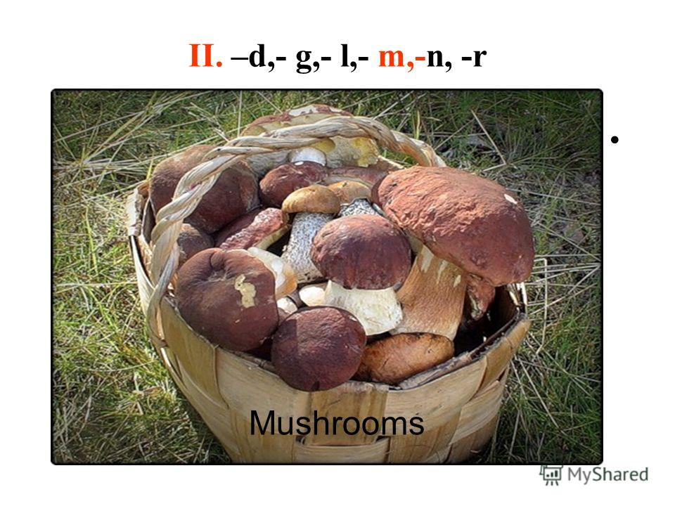 II. –d,- g,- l,- m,-n, -r Mushrooms
