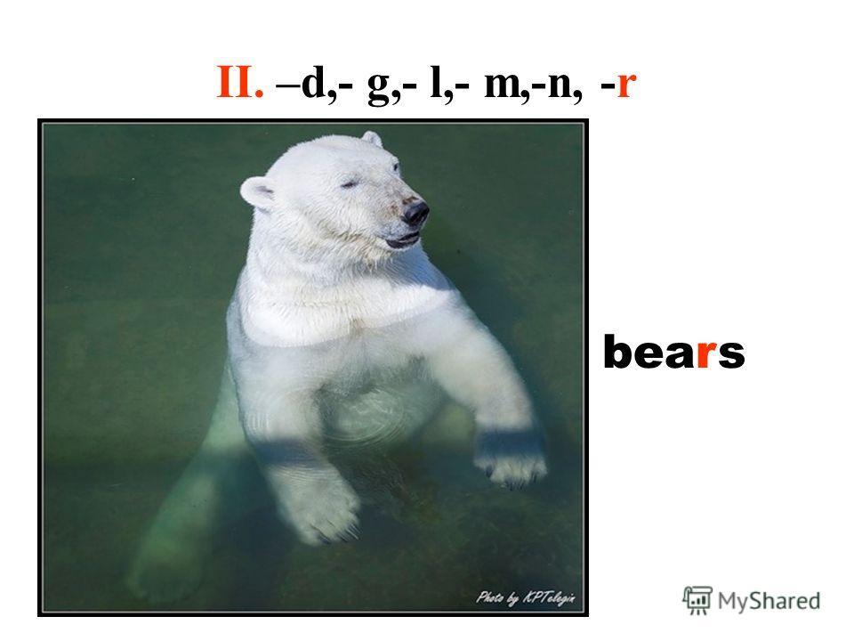 II. –d,- g,- l,- m,-n, -r bears