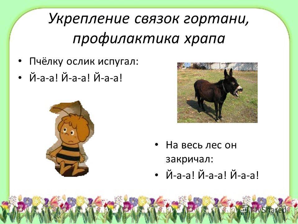 Укрепление связок гортани, профилактика храпа Пчёлку ослик испугал: Й-а-а! Й-а-а! Й-а-а! На весь лес он закричал: Й-а-а! Й-а-а! Й-а-а!