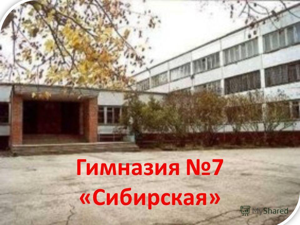 Гимназия 7 «Сибирская»