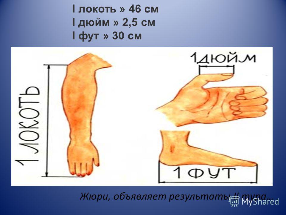 I локоть » 46 см I дюйм » 2,5 см I фут » 30 см Жюри, объявляет результаты II тура…