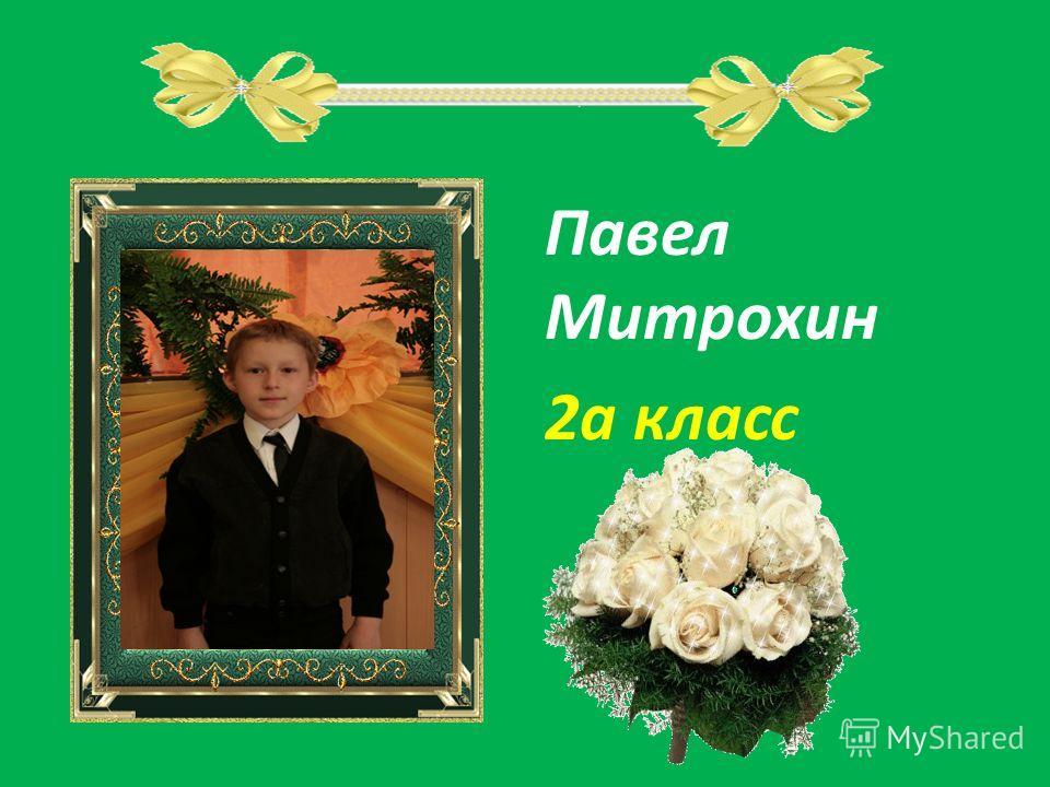Павел Митрохин 2а класс