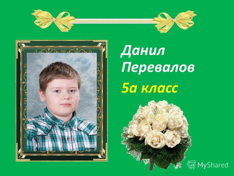 Данил Перевалов 5а класс