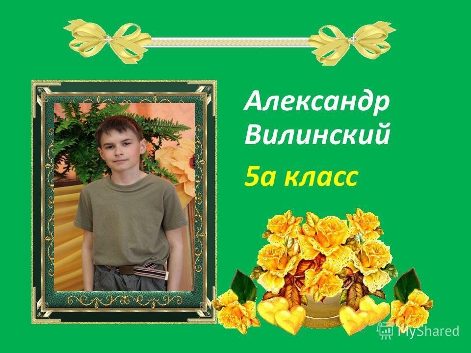 Александр Вилинский 5а класс