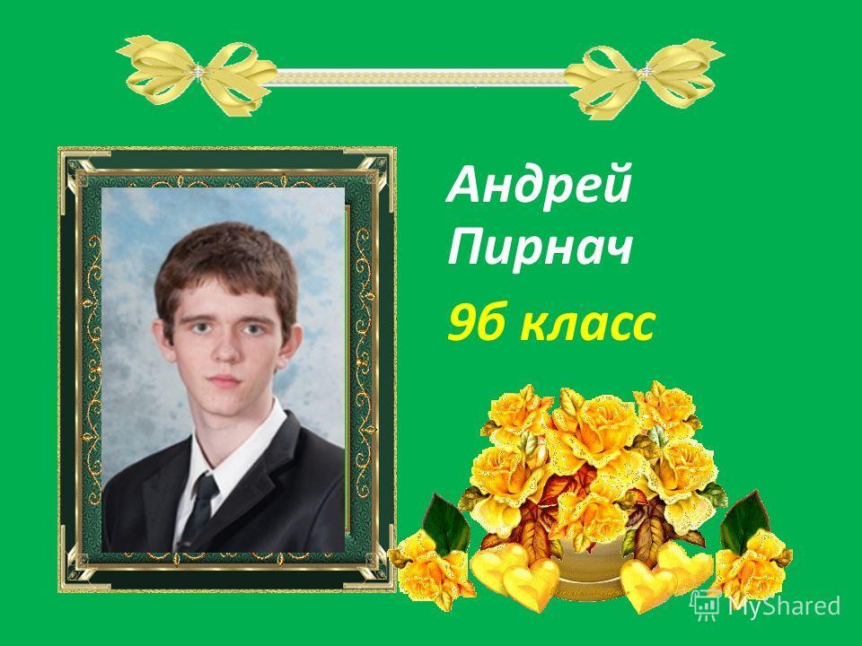 Андрей Пирнач 9б класс